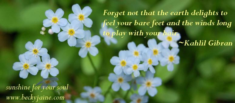 forgetnot_beckyjaine_2014