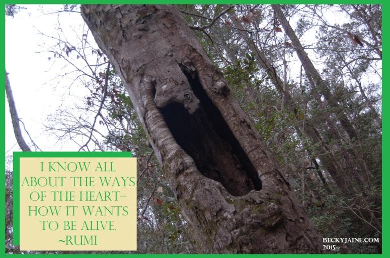 ways of the heart becky jaine 2015